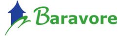Baravore Consulting